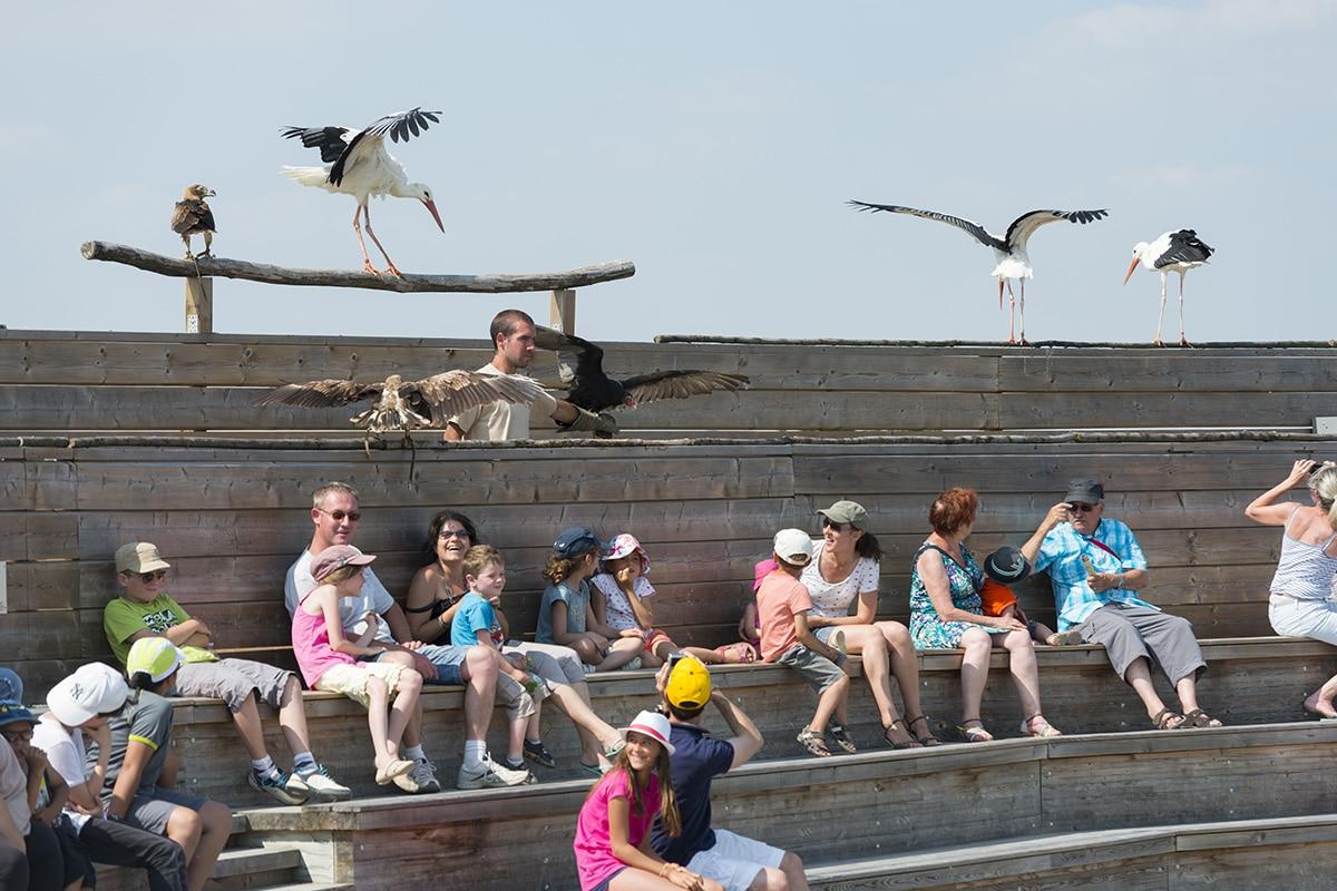 Les visiteurs du Zoo de la Boissière du Doré