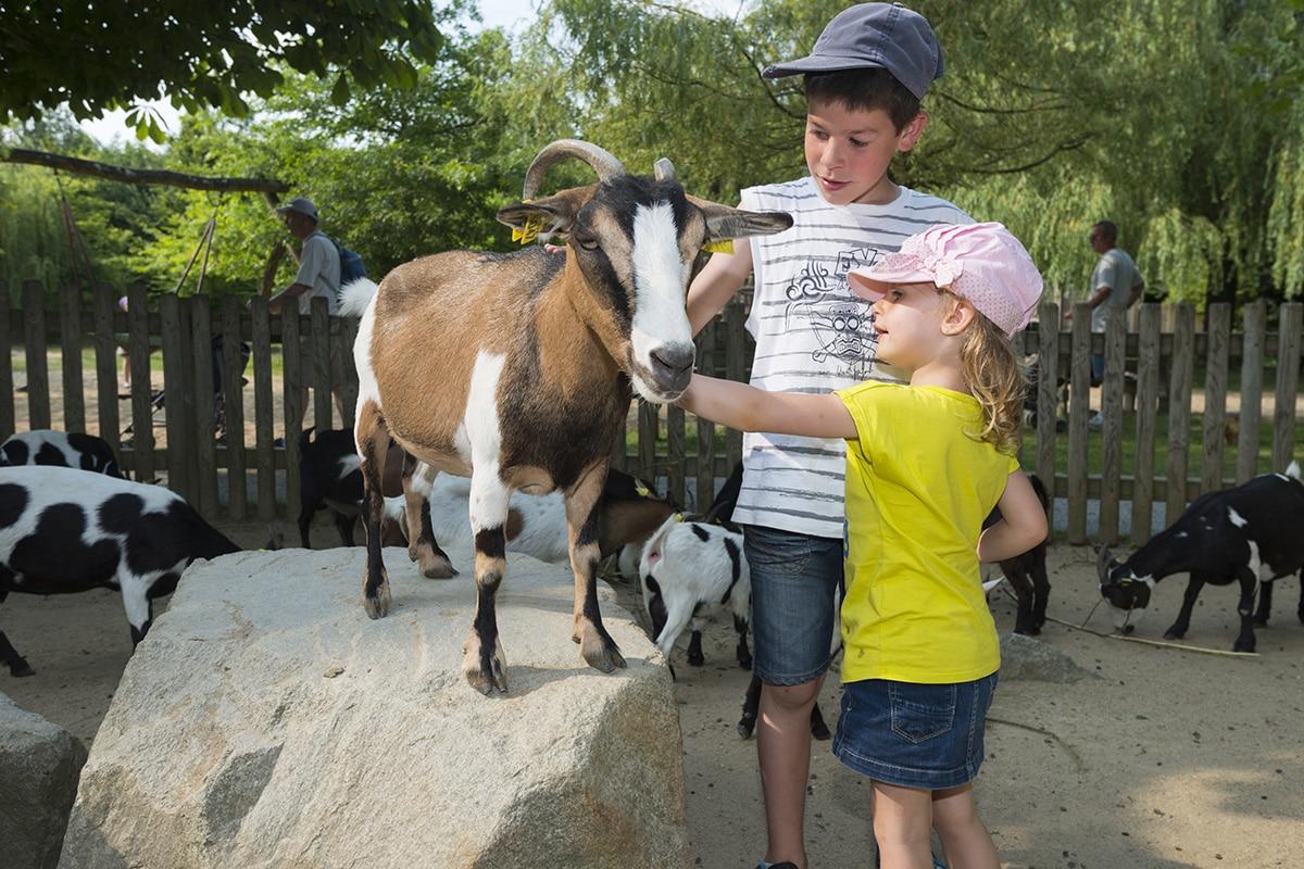 Visite en famille au Zoo de la Boissière