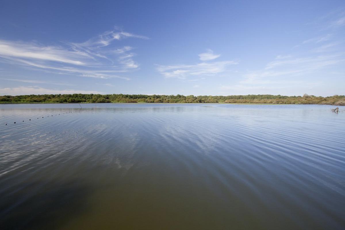 Le Lac de Grand Lieu