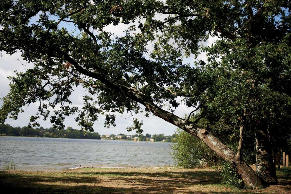 Le Lac Vioreau