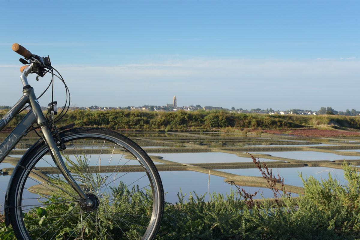 Vélocéan au milieu des marais salants
