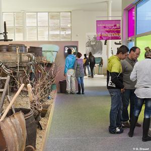Le Musée du Vignoble Nantais