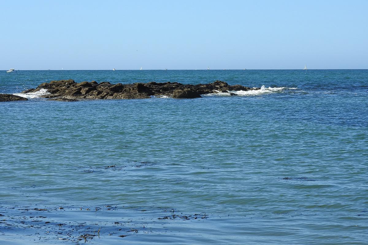vue sur mer moulin de praillane piriac-sur-mer