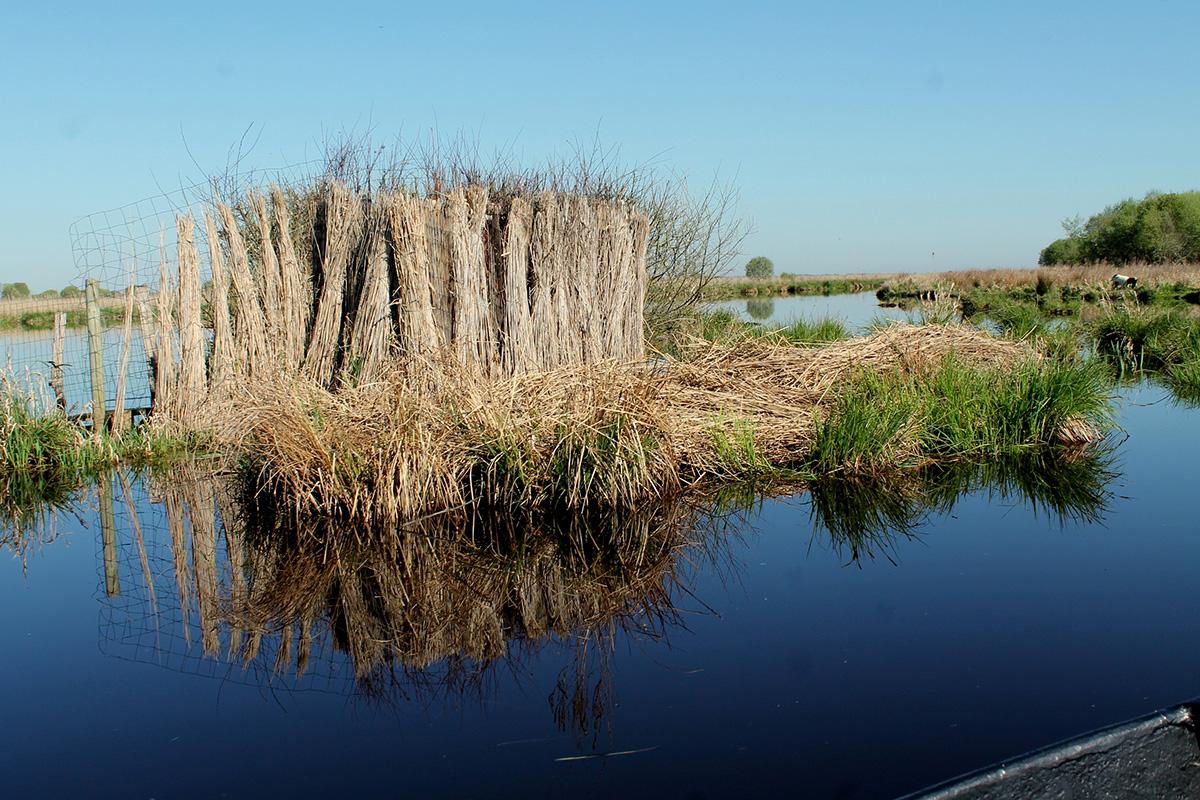 escapade nature en famille dans le marais de Brière