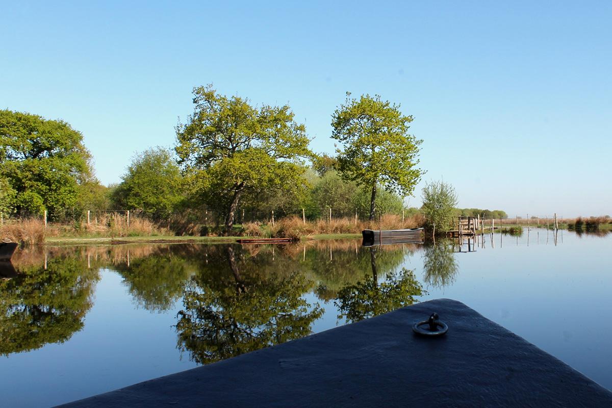 balade en famille en chaland dans le marais de Brière en Loire-Atlantique