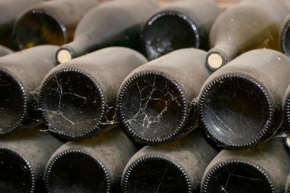 vin muscadet château du cléray