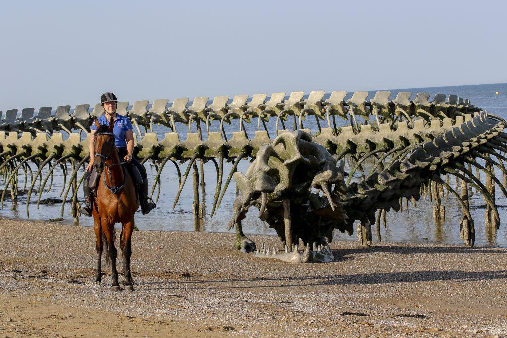 La Loire à cheval et à vélo à Saint Brévin