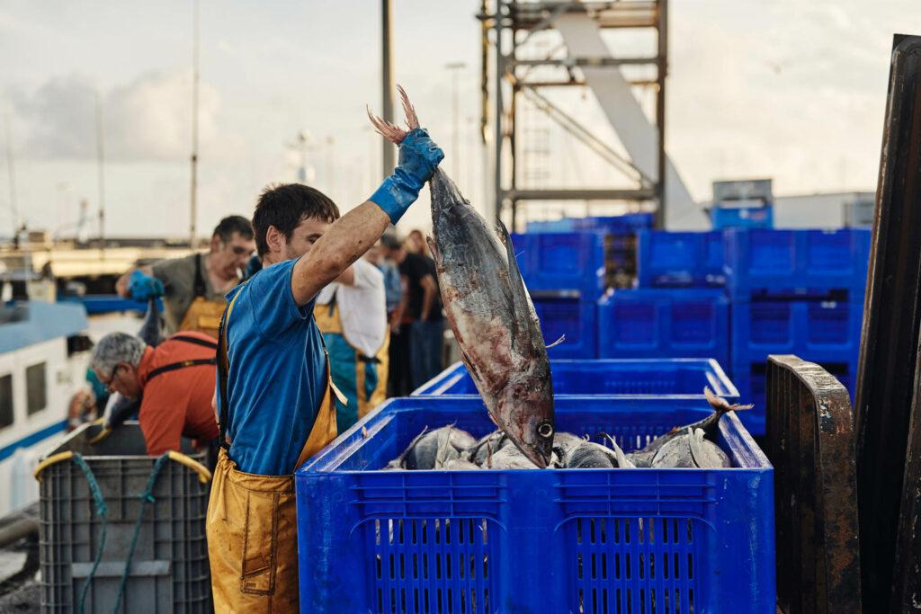 Retour de pêche à La Turballe @ Alexandre Lamoureux