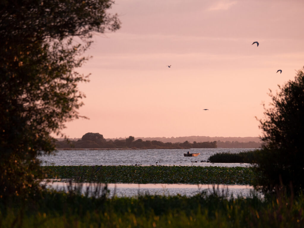 Vue sur le lac de Grand-Lieu depuis Passay @ Les globe blogueurs